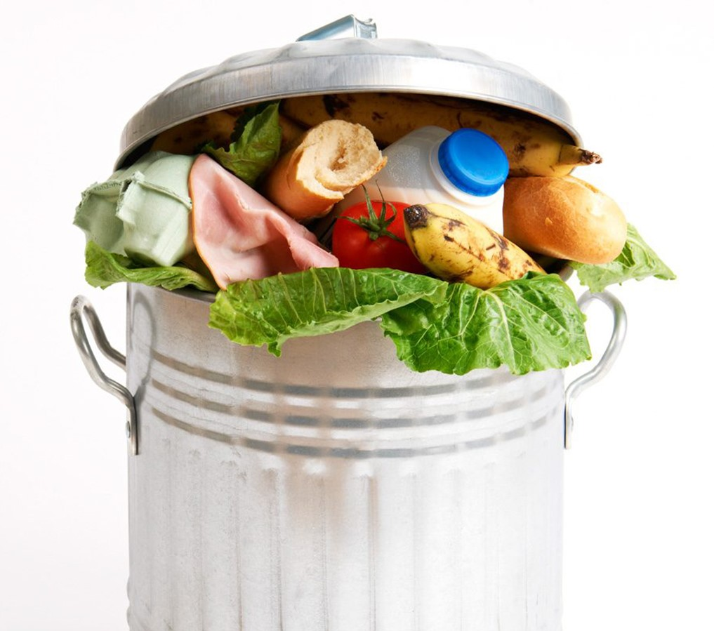 foodwasteaudit_reducingfoodwaste-1688x900.jpg