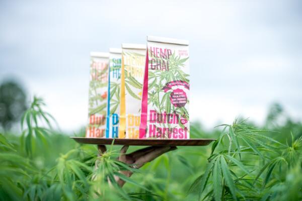 Dutch Harvest