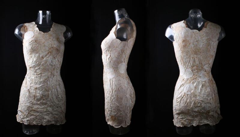 1-mycoTEX_proof-of-concept_dress-Aniela-Hoitink.jpg