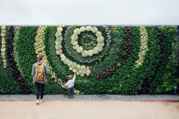 How to Biodesign #6: Vertical farming in an existing environment
