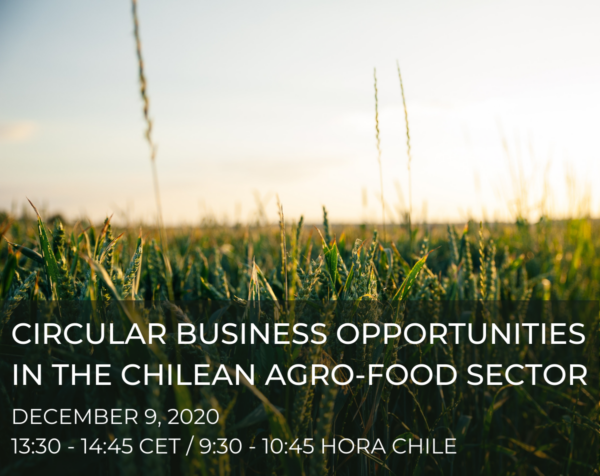 Circular Business Opportunities in the Chilean Agro-Food Sector