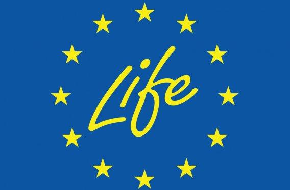 Webinar LIFE Subsidy for Dutch entrepreneurs